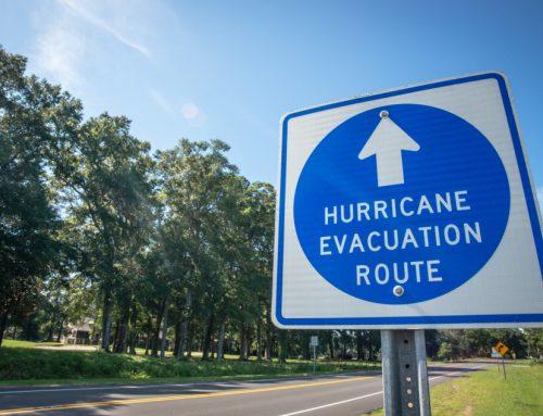 5 Ways to Ensure You are Pet-Prepared for Hurricane Season